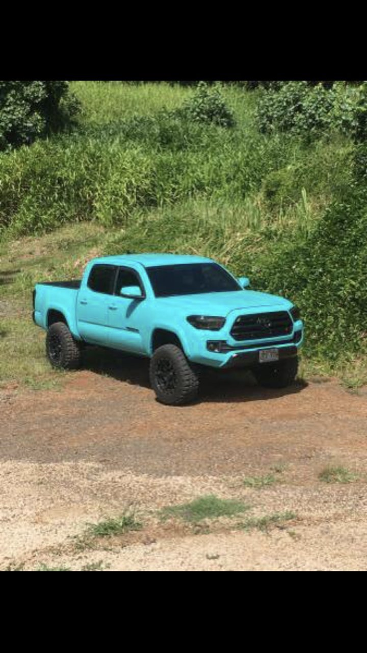 Toyota Tacoma Colors >> Are The Colors Out Yet For 2019 Page 2 Tacoma World