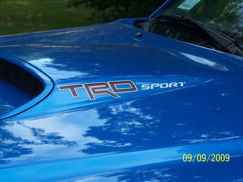 Hood scoop decal.jpg