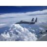F15Taco