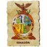 sinaloa226