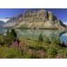 Banff2007Tacoma