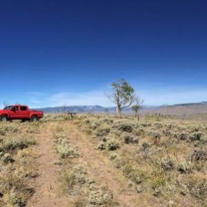FS road exploration