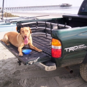 whats a truck without a dog in the back