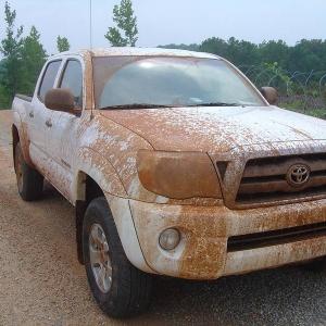 Muddy Tacoma