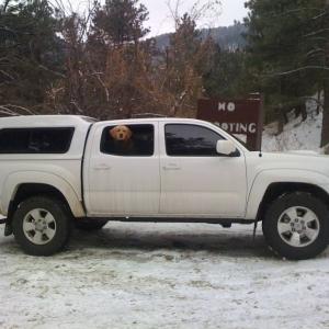 2009 Tacoma TRD Sport Super White