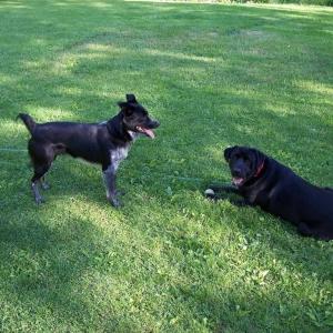 Skeeter and Carter Together