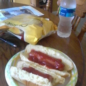Lunch. hotdogs chips and a water