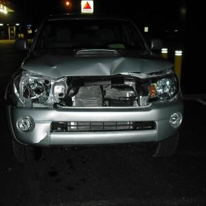 Deer hit 11-10-2009