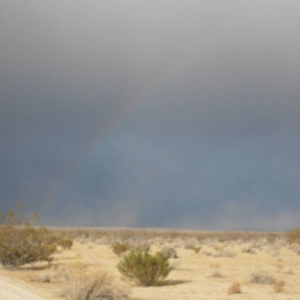 my dust trail blowing by a rainbow