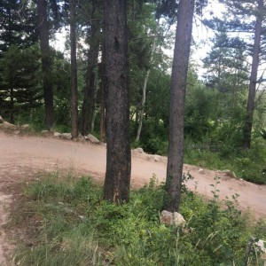 Ripping through a tight series of turns, Hand slipped off the bar here, sent it right off the trail, bike hit the rock and right tree, and I flew thro