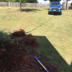 Yard work day.