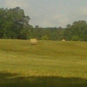 Bailed Hay