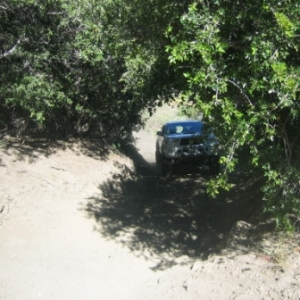 Rohwer Trail June 2010