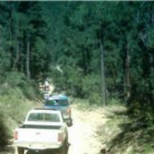 trail31
