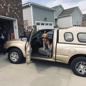 Gus In Truck