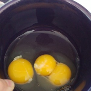 Mutant chickens for breakfast today