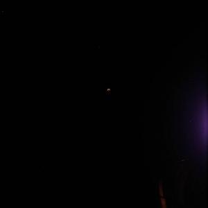 tacoeclipse