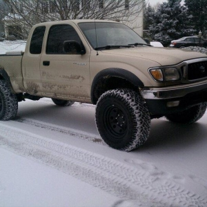 taco_in_the_snow1