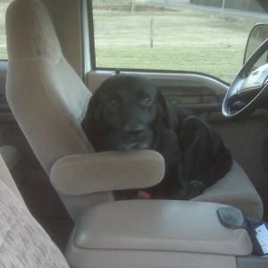 My buddy Zac Dog