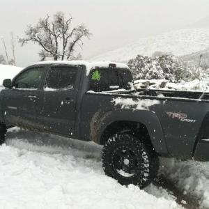 snowtaco3