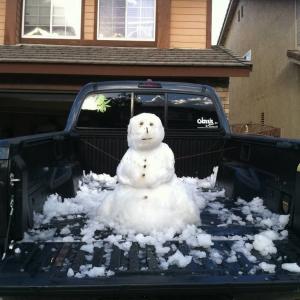 snowtaco4