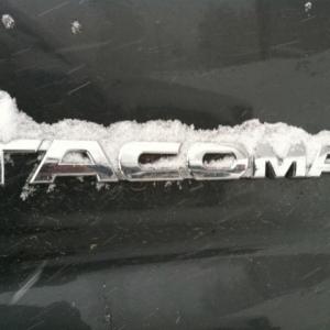 snowtacoemblem