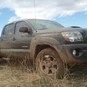Got Mud!