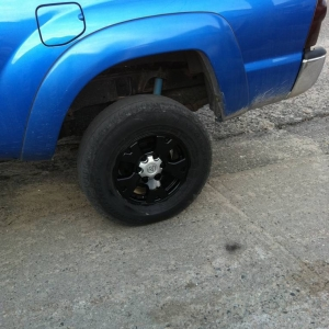 painted my rims