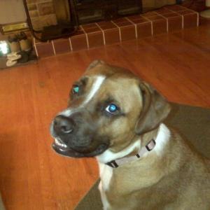Layla says, sup tw!