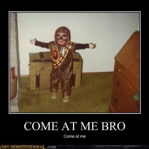 demotivational-posters-come-at-me-bro