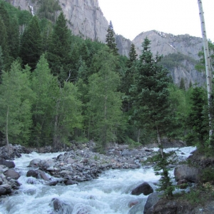 Camp Site outside Ouray, CO