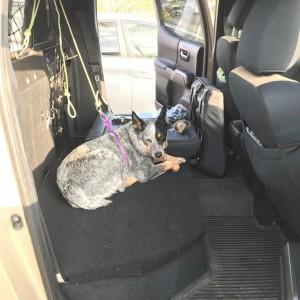 60/40 rear seat delete Passenger