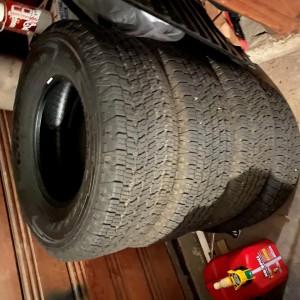 Trdor Tires 3