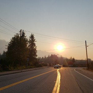 Forest Fire Drive Power Lines