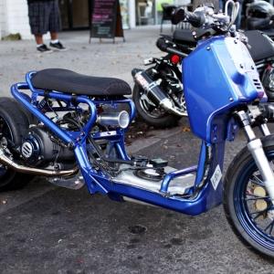 Mag Blue Ruckus