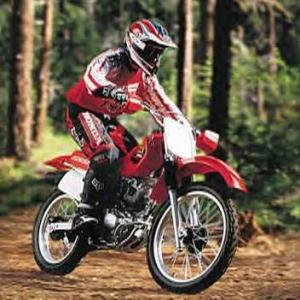 Honda21