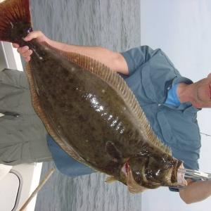 biggest halibut i caught off santa monica cali..28 lbs