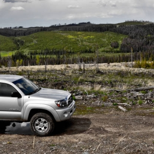 2009 TRD Offroad