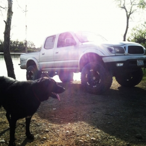 02 double cab and my timber wolf mix