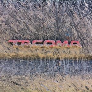 Taco_logo_mud