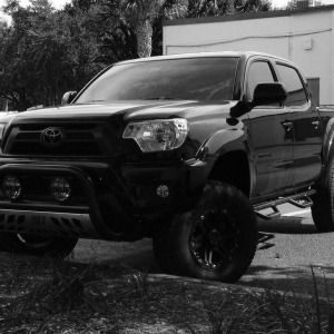 new pics of the taco