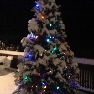 My colored light tree in the snow.....beautiful