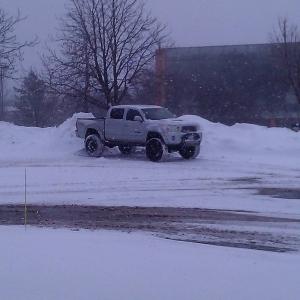 Snow Taco