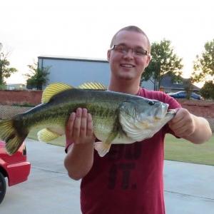 Mitchell's Fish