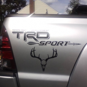 New Decal1