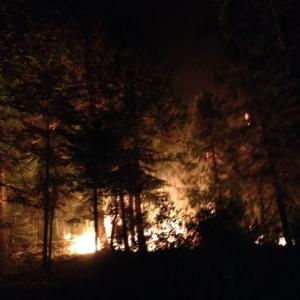 King fire last night