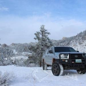 taco snow