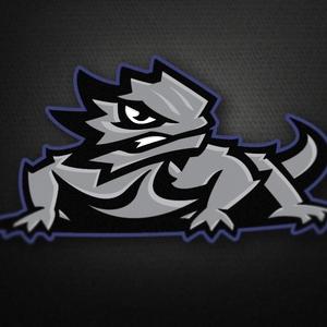 Dribbble_-_tcu_logo_2_1x