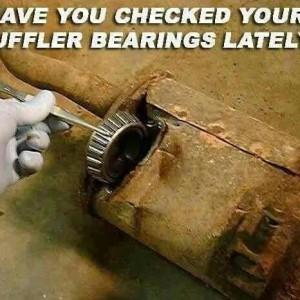 Muff Bearings