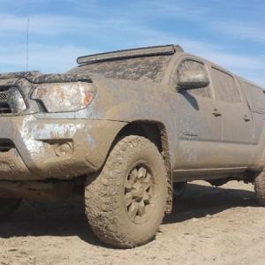 Muddy 2014 Tacoma
